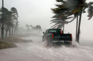 hurricane winds florida